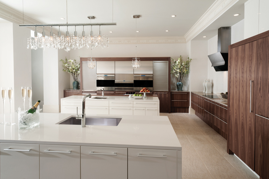 contemporary kitchen cabinetry - Contemporary Kitchen Cabinets